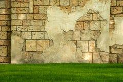 从coquina的老墙壁和与绿草的下落的膏药 风格化织地不很细难看的东西背景 库存图片
