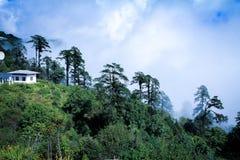 从Druk Wangyal与108 chortens的Khangzang Stupa, Dochula通行证,不丹的风景 库存图片