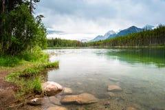从Herbert湖的山全景 库存图片