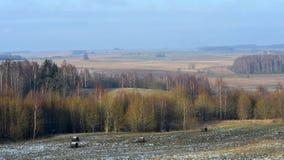 从hillfort Girniku的看法 在城市希奥利艾,立陶宛附近安置 免版税库存照片