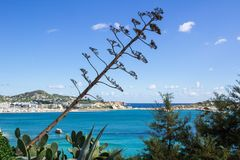 从Ibizza的海视图从上面到沿海水域 免版税库存照片