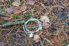 从iphone的残破的充电在下落的针在一个具球果秋天森林里 图库摄影