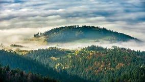 从Luban峰顶的有薄雾的日出风景在Gorce山 免版税库存图片