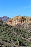 从Mesa,亚利桑那的Tonto国家森林风景视图向峡谷湖亚利桑那,美国 图库摄影