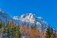 从Pisana沼地的山峰, Koscieliska谷冬天 库存照片