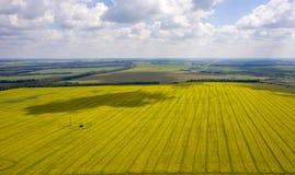 从quadrocopter的看法在开花的油菜籽的领域与漂浮在天空的云彩的复杂样式的 免版税库存照片