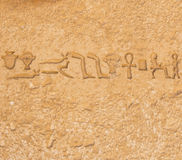 从saqqarah,开罗的埃及象形文字 库存图片