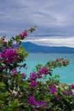 从Scaligero城堡的加尔达湖,西尔苗内 免版税库存照片