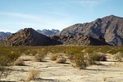 从Sheephole谷原野的沙漠视图 免版税图库摄影