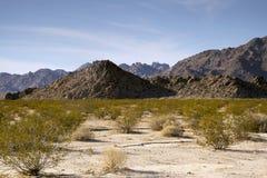 从Sheephole谷原野的沙漠视图 免版税库存照片