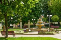 从Simleu Silvaniei市, Salaj县,特兰西瓦尼亚,罗马尼亚的中央公园 库存照片