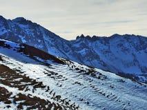 从Spitzli的顶端全景在Urnasch解决附近 库存照片
