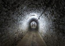 从Turda的盐矿,罗马尼亚 库存照片