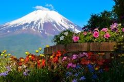 从Yamanaka湖的富士山视图 免版税库存照片