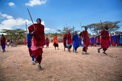 他们的礼节舞的Maasai人在他们的村庄在坦桑尼亚,非洲 免版税库存照片