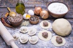 他们的面团和肉末在一个木板,背景自创饺子  库存图片