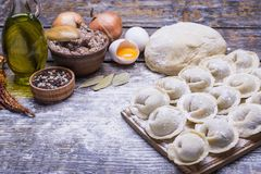 他们的面团和肉末,一套自创饺子烹调的产品:面粉,面团,肉末,鸡蛋,橄榄 免版税库存图片