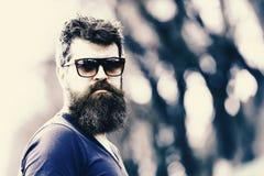 他的中间30s或40s的强壮男子与时髦的头发漫步在城市的 有胡子的摆在人佩带的太阳镜户外 活动家 免版税库存照片