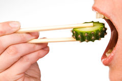 仙人掌吃片式 免版税图库摄影