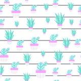 仙人掌和多汁植物的无缝的样式与滑稽 编辑可能的元素,纺织品的象,网 免版税库存图片
