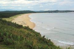 仙人掌和海滩 免版税库存图片