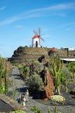 仙人掌庭院Jardin de Cactus在兰萨罗特岛海岛 免版税图库摄影
