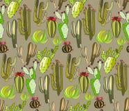 仙人掌油漆的明亮的逗人喜爱的美好的抽象可爱的墨西哥热带花卉草本夏天绿色套喜欢在beig的儿童样式 皇族释放例证