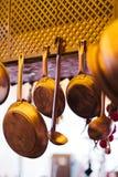 仙人掌的家庭菜园汇集 免版税库存图片