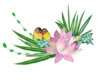仙人掌的水彩例证与鹦鹉的 皇族释放例证