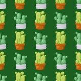 仙人掌自然沙漠花绿色墨西哥多汁热带植物无缝的样式仙人掌花卉例证 免版税库存照片