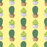 仙人掌自然沙漠花绿色墨西哥多汁热带植物无缝的样式仙人掌花卉例证 图库摄影