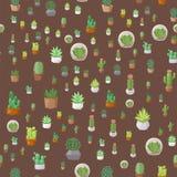 仙人掌自然沙漠花绿色墨西哥多汁热带植物无缝的样式仙人掌花卉例证 免版税库存图片