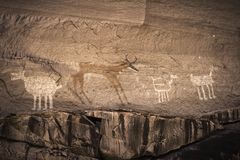 代表在Chelly峡谷的Anasazi刻在岩石上的文字动物- 免版税图库摄影
