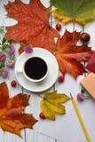 代表秋天心情的一张明亮的照片 免版税库存图片