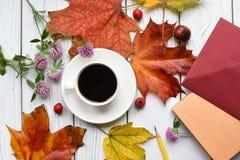 代表秋天心情的一张明亮的照片 库存图片