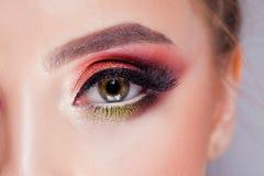 令人惊讶的明亮的眼睛构成在豪华猩红色树荫下 桃红色和蓝色,色的眼影膏 免版税库存图片