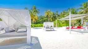 令人惊讶的暑假背景 海滩豪华风景与白色海滩机盖和懒人的 豪华海滩海岛 免版税图库摄影