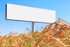 以一个空的广告牌的形式模板在一个黄色领域 免版税库存照片