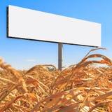 以一个空的广告牌的形式模板在一块黄色麦地和在蓝天背景  库存图片