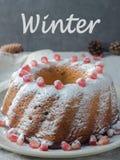以一个花圈的形式圣诞节蛋糕与在白色板材选择聚焦的搽粉的糖和石榴种子 图库摄影