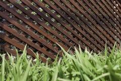 以一个走廊的形式土气木栅格结构在石地板和绿草上 免版税库存图片