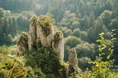 以一只手的形式手指的斯卡拉在Ojcov国家公园 免版税库存照片