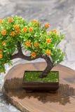 以一棵树的形式人造花在桌上 免版税图库摄影
