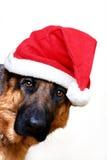 以后的圣诞老人 库存照片