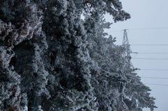 以后站立在被冰的森林后的灰色天空背景的高压传输塔的冬天照片 库存照片