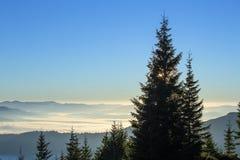 以喀尔巴阡山脉为背景的日出在夏天 乌克兰 库存图片