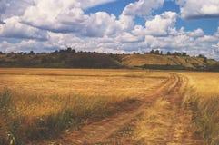 以夏日多云天空为背景的绕黄色路在领域和小山预留了俄罗斯的公园地方 库存照片