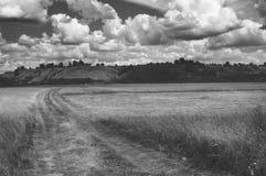 以夏日多云天空为背景的绕黄色路在领域和小山预留了公园地方 免版税库存图片