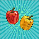 以子弹密击辣椒粉流行艺术可笑的样式手拉的动画片eco食物菜小点背景传染媒介 库存照片