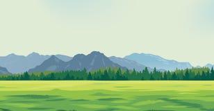 以山为背景的绿色沼地 免版税库存照片